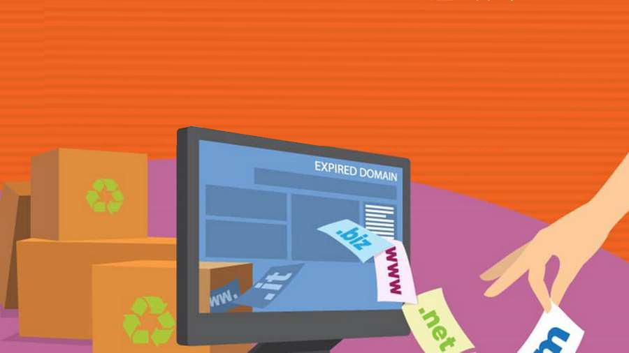 Три сценария быстрого запуска PBN: на дропах, купленных сайтах и блог-платформах